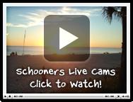 live_cam_image