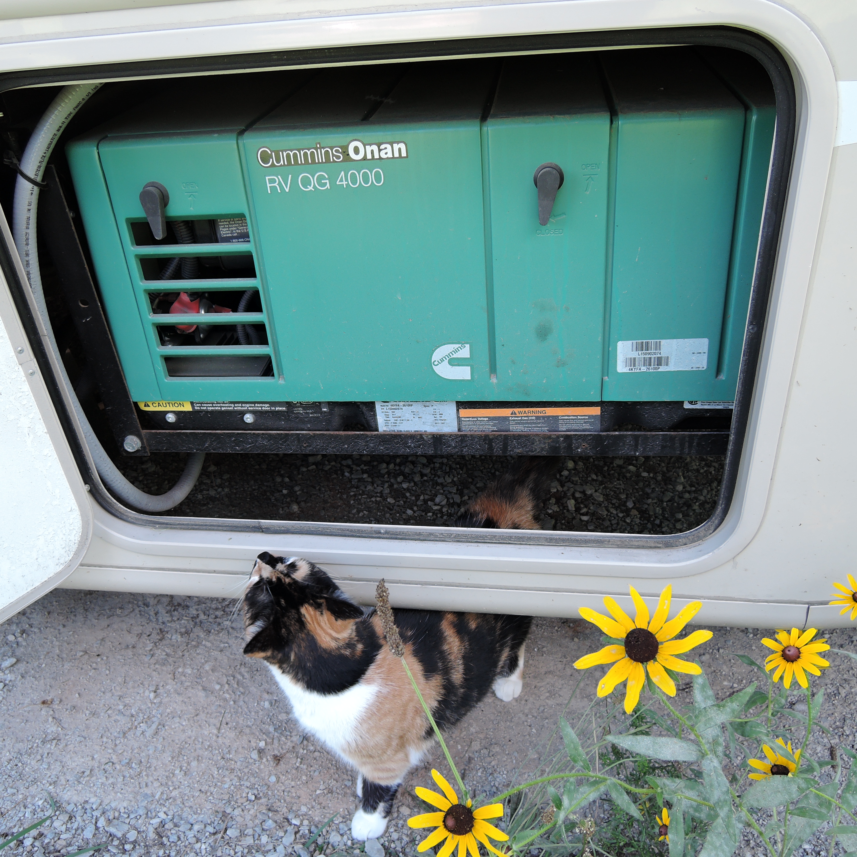 Easy Guide To Rv Power Systems The Flying Mantis