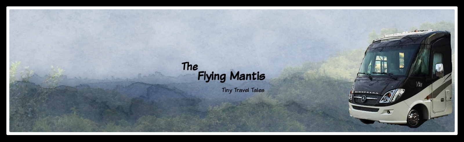 The Flying Mantis